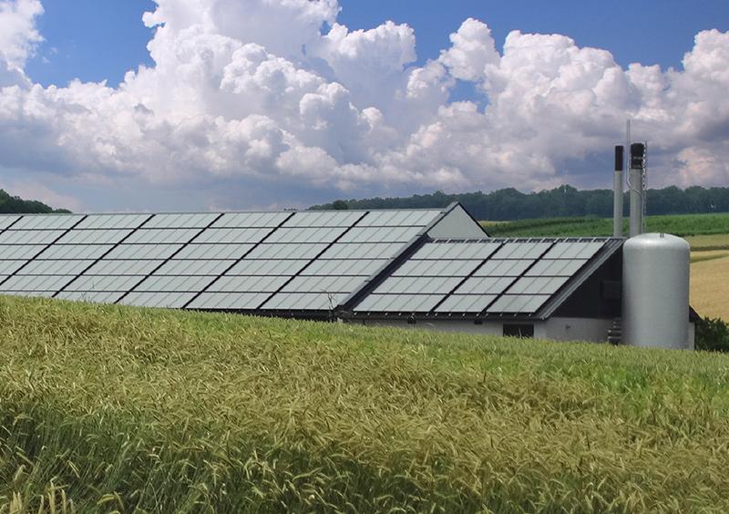 Bio-Solar-Wärme Poysbrunn GASOKOL