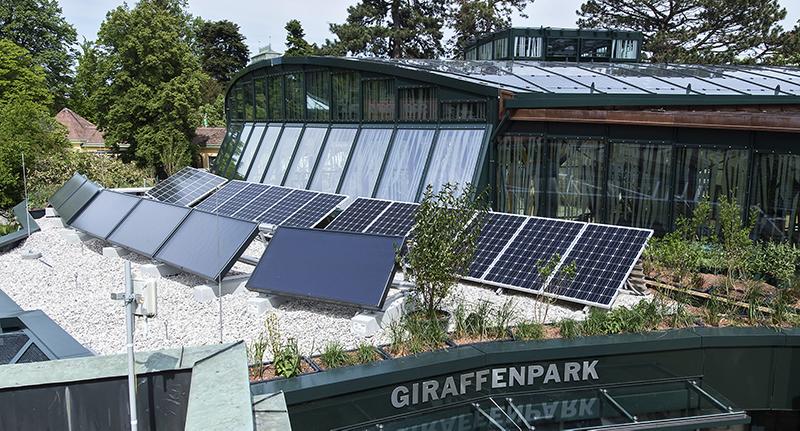 Giraffenpark Wien